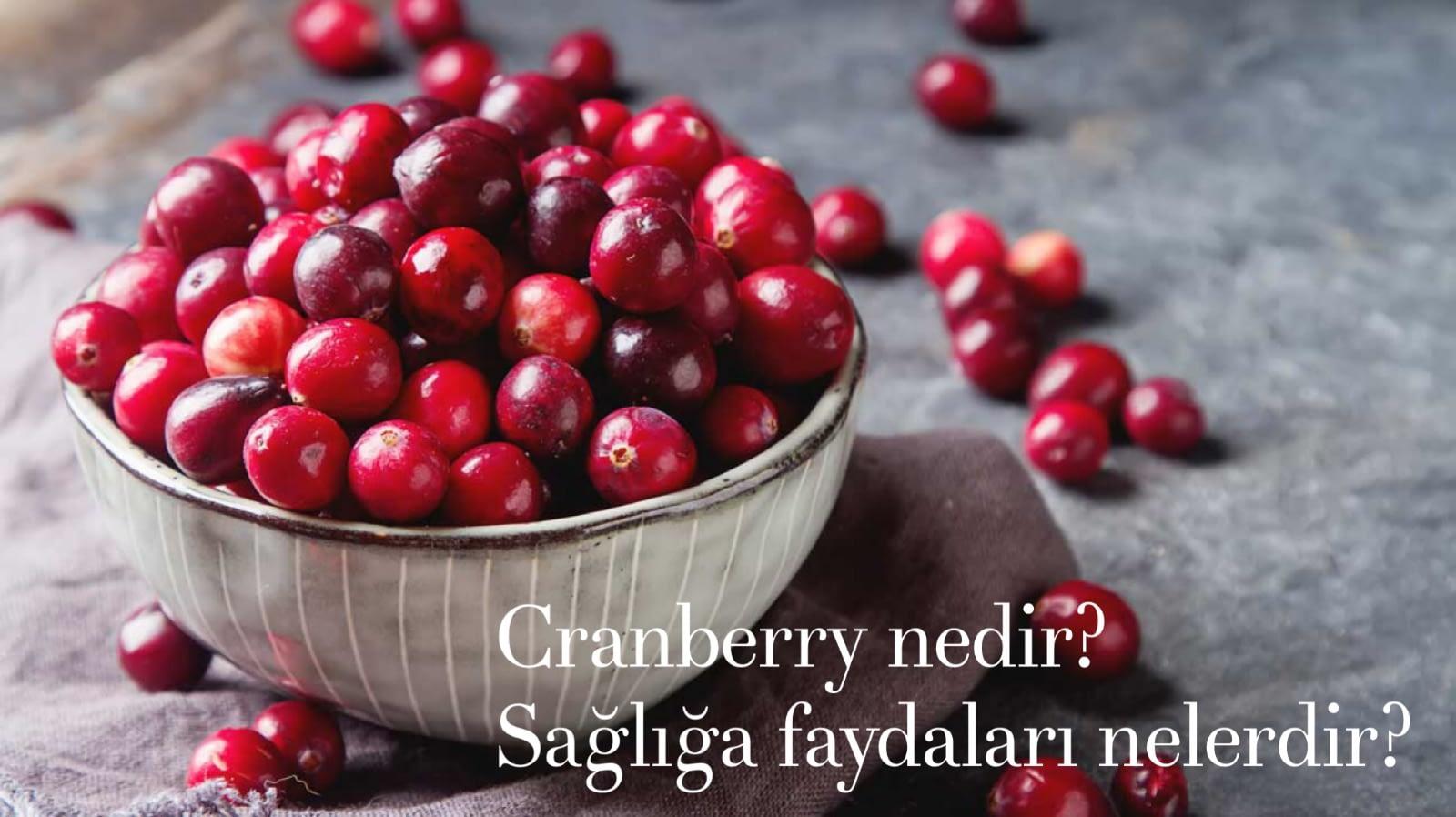 Cranberry (Turna Yemişi ) Nedir? Cranberry'in Sağlığa Faydaları Nelerdir?